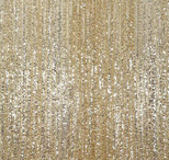 champagne  florida photo booth rental curtain