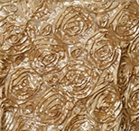 gold rosette florida photo booth rental curtain