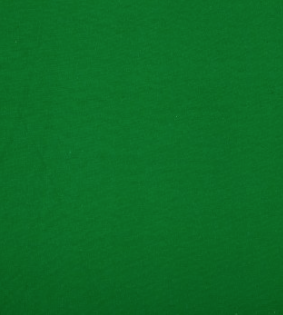 green spandex florida photo booth rental curtain